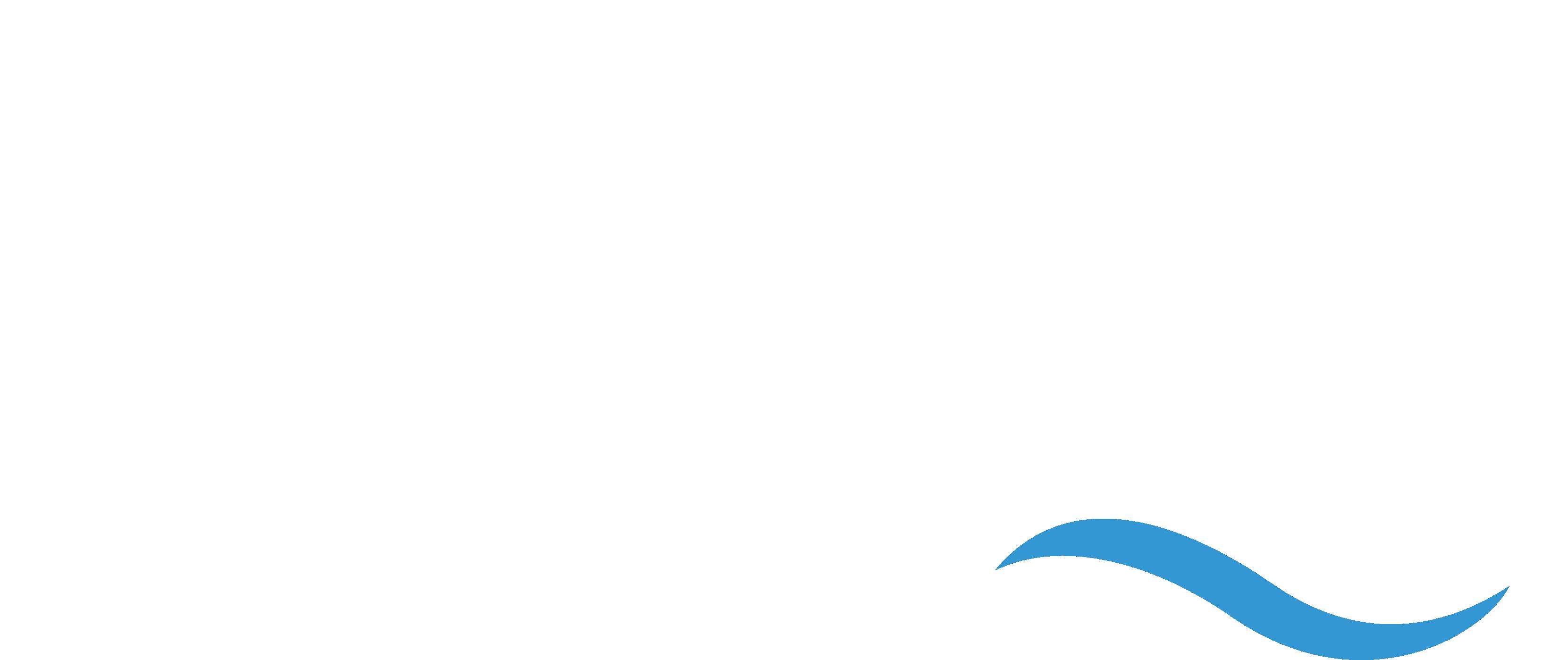 Zeeuws Paardengedrag